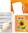Find Recommended Paper Stock and Printing Media