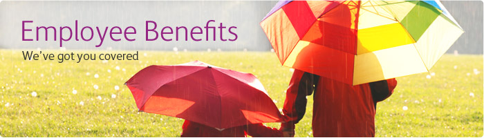 Xerox Employee Benefits  Total Value Benefit Offerings to Meet Every DSsm0QsD