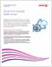 Print Security Audit Service brochure